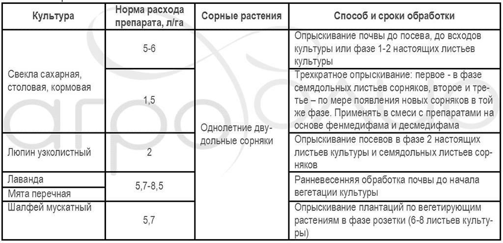 Регламент применения гербицида Пилот