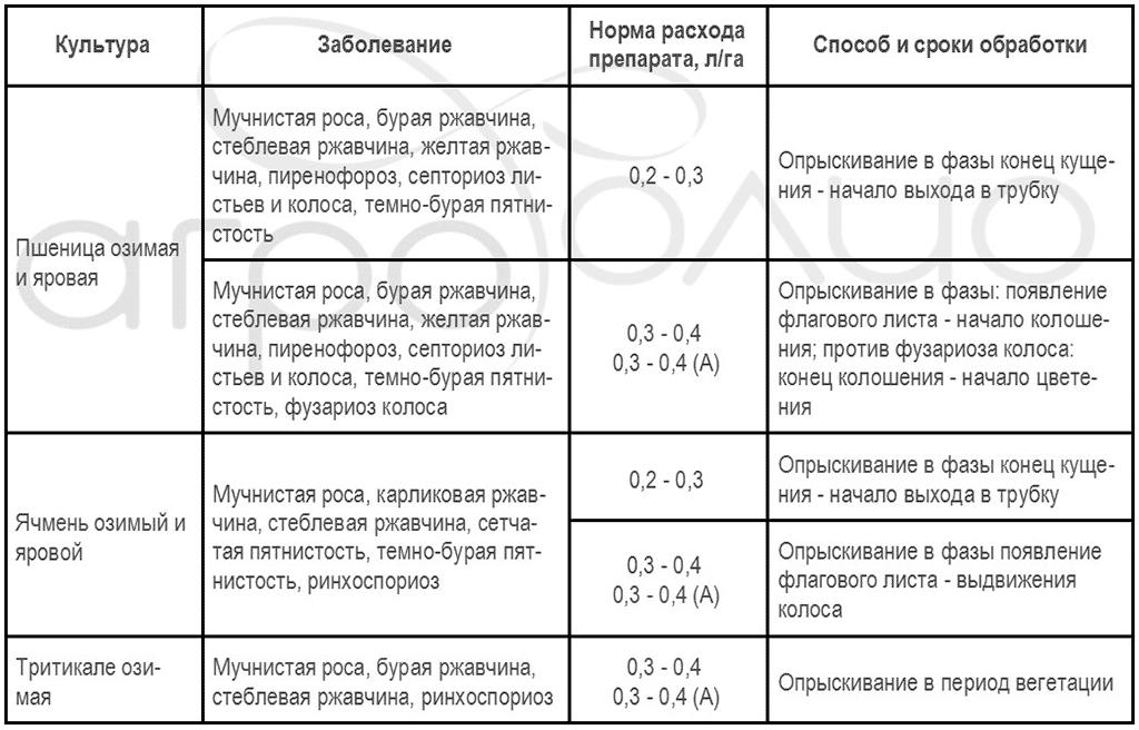 Регламент применения фунгицида Ракурс