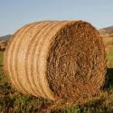 Сетка для сенажа (сенажная)