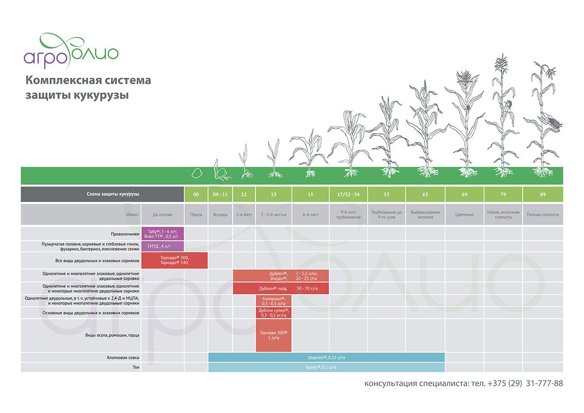 Схема зашиты кукурузы