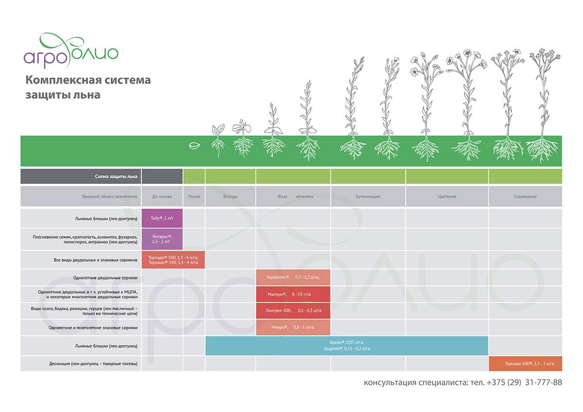 Схема защиты льна масличного